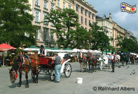Auf dem Rynek Główny (Hauptmarkt) warten Fiaker auf Touristen für Stadtrundfahrten., Polen, Polska, Bilder, Fotos, Krakau, Kraków, Hauptmarkt, Rynek Główny, Fiaker