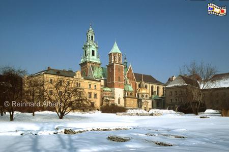 In der Kathedrale auf dem Wawel wurden alle poln. Könige gekrönt und bestattet., Polen, Polska, Fotos, Bilder, Krakau, Kraków, Wawel, Kathedrale