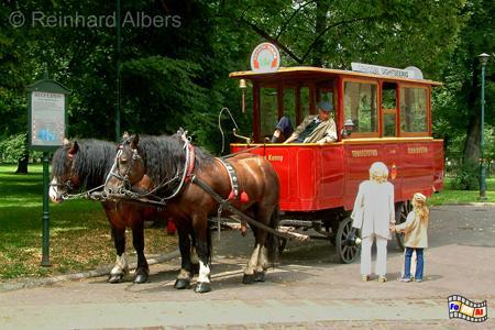 Pferdestraßenbahn anno dazumal., Polen, Polska, Fotos. Bilder, Krakau, Kraków, Straßenbahn, Pferdestraßenbahn