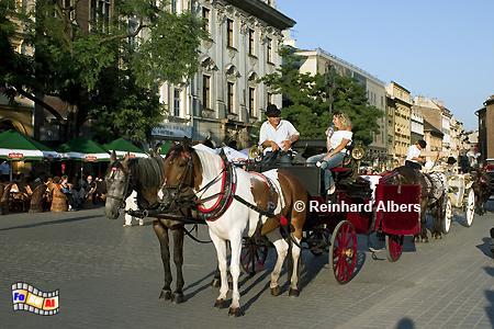 Fiaker laden zur Kutschfahrt ein, Polen, Polska, Fotos, Bilder, Krakau, Kraków, Fiaker, Pferdekutschen, Stadtrundfahrt