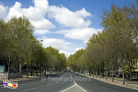 Avenida da Liberdade - Prachtboulevard, Lissabon, Avenida, Liberdade, Boulevard, Albers, Foto, foreal