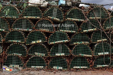 Cascais Hummerreusen, Portugal, Cascais, Hafen, Atlantik, Hummerreusen, Albers, Foto, foreal,