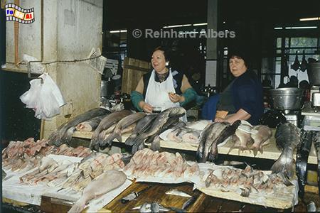Fischstand in der Markthalle von Lissabon., Lissabon, Markthalle, Mercado, Fisch, Auslagen, Albers, Foto, foreal,