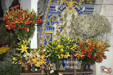 Blumen in der Markthalle von Lissabon, Lissabon, Markthalle, Mercado, Blumen, Auslagen, Albers, Foto, foreal,