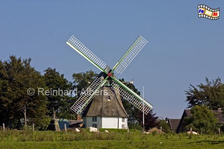 Munkbrarup - Mühle