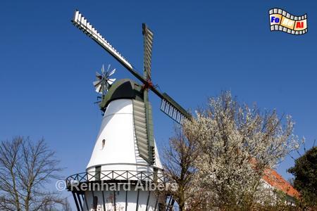 Sønderborg im südlichen Dänemark. Name: Sønderborgs Slotsmølle 1875., Windmühle Dänemark, Sønderborg, Sonderborg