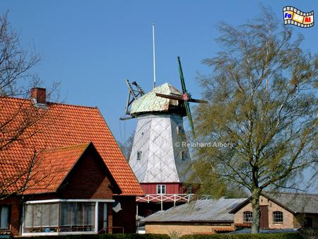 Die Windmühle von Elstrup auf der Insel Als (Alsen) in Dänemark stand ursprünglich in Østerholm und wurde bereits 1888 nach Elstrup versetzt., Windmühle, Dänemark, Insel, Alsen, Als, Elstrup, Galerieholländer