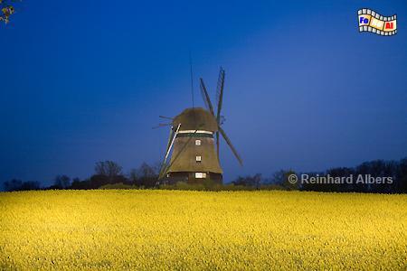 Blaue Stunde bei der Windmühle von Farve., Windmühle, Farve, Ostholstein, Schleswig-Holstein, Albers, foreal, Foto