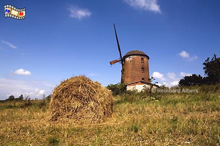 Polen - In Zdrzewno (Zimdarsen)  südöstlich von Leba in Pommern steht diese Windmühle. , Polen, Polska, Windmühle, Zdrzewno, Zimdarsen, Pommern, Windmühle, foreal, Albers, Foto