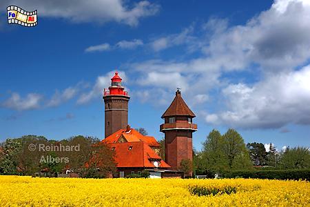 Dahmeshöved in Ostholstein, Leuchtturm, Deutschland, Schleswig-Holstein, Ostseeküste, Dahmeshöved, Raps