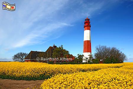 Flügger Leuchtturm - Insel Fehmarn, Leuchtturm, Schleswig-Holstein, Fehmarn, Insel, Flügge, Albers, Foto, foreal, Ostseeküste