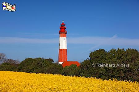 Leuchtturm Flügge auf der Insel Fehmarn, Leuchtturm, Schleswig-Holstein, Fehmarn, Insel, Flügge, Albers, Foto, foreal, Ostseeküste