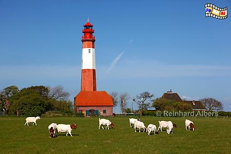 Flügge auf der Insel Fehmarn, Leuchtturm, Schleswig-Holstein, Fehmarn, Insel, Flügge, Albers, Foto, foreal, Ostseeküste