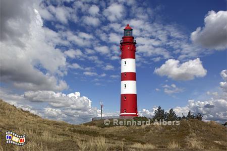 Insel Amrum, Leuchtturm, Deutschland, Schleswig-Holstein, Nordseeküste, Anrum, Albers, Foto, foreal,
