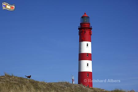 Insel Amrum., Leuchtturm, Deutschland, Schleswig-Holstein, Nordseeküste, Amrum, Albers, Foto, foreal,