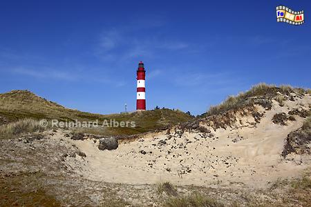 Insel Amrum, Leuchtturm, Deutschland, Schleswig-Holstein, Nordseeküste, Amrum, Albers, Foto, foreal,
