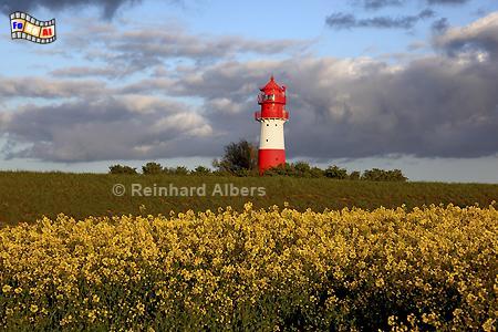 Rapsblüte beim Leuchtturm Falshöft in Schleswig-Holstein, Ostseeküste., Leuchtturm, Ostseeküste, Lighthouse, Phare, Falshöft, Pommerby, Albers, Foto, foreal,