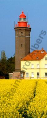 Dahmeshöved in Schleswig-Holstein., Leuchtturm, Deutschland, Schleswig-Holstein, Ostseeküste, Dahmeshöved, Rapsblüte