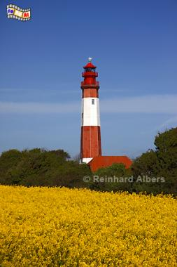 Leuchtturm Flügge auf der Insel Fehmarn., Leuchtturm, Lighthouse, Phare, Fehmarn, Flügge, Ostsee, Albers, foreal, Foto,