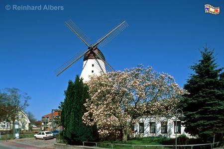 Kappeln - Die Holländermühle
