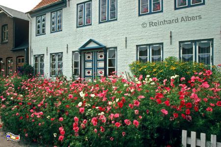 Tönning - Haus am Hafen, Schleswig-Holstein, Tönning, Nordseeküste, Albers, Foto, foreal,