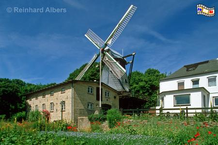 Flensburg - Bergmühle