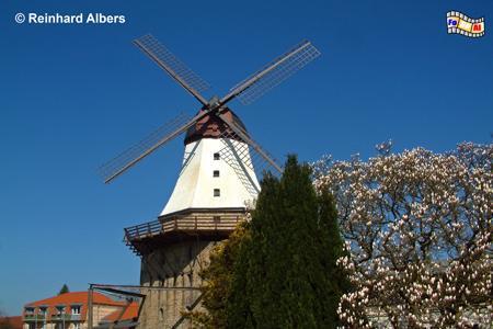 Kappeln - Mühle