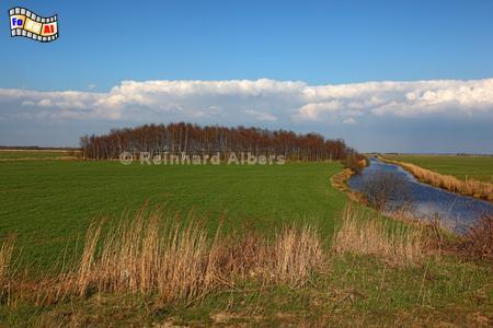 Fluss Rinne bei Friedrichsholm, Schleswig-Holstein, Rinne, Friedrichsholm, foreal, Albers, Foto,