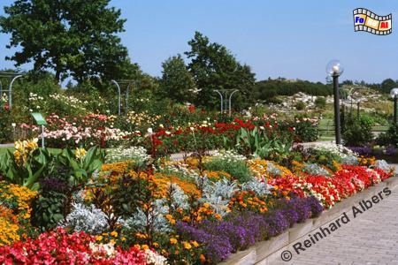 Der Botanische Garten der Universität Kiel., Kiel, Botanischer, Garten, Kiel, Albers, Foto, foreal,