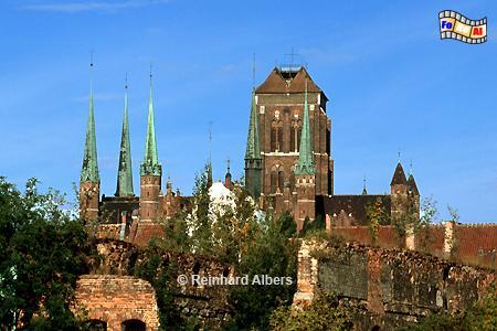 Gdańsk (Danzig) - Kościól Mariacki. Mit einer Länge von 105m und einer Breite von 66 m im Querschiff ist die Marienkirche die größte Backsteinkirche der Welt. , Polen, Danzig, Gdańsk, Rechtstadt, Marienkirche, Kościól, Mariacki. Albers, Foto, foreal