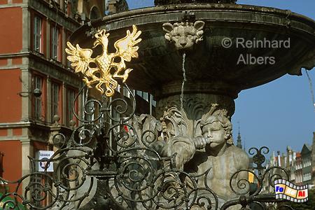 Fontana Neptuna (Neptunbrunnen) -  Der Entwurf für den 1633 aufgestellten Brunnen stammte von Abraham van dem Blocke., Polen, Danzig, Gdańsk, Neptunbrunnen, Langer, Markt, Długi, Targ, Blocke, Albers, Foto, foreal