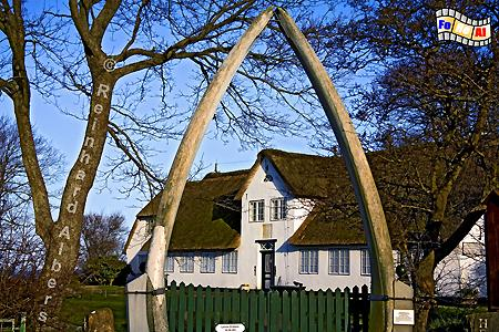 Heimatmuseum in Keitum auf Sylt., Schleswig-Holstein, Sylt, Keitum, Heimatmuseum, Haustür, Albers, Foto, foreal,